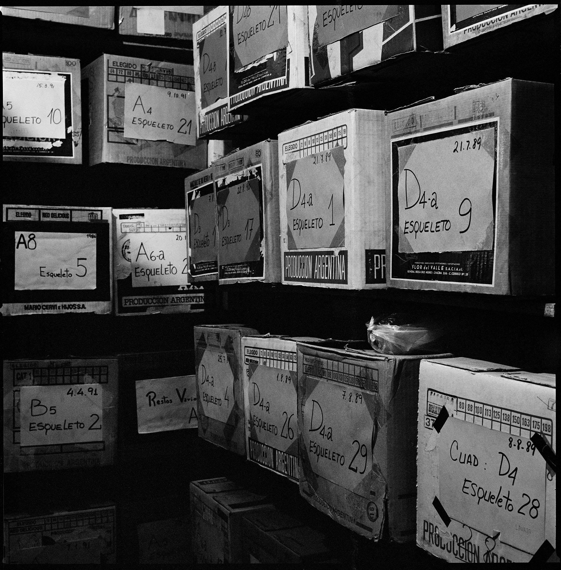 Depósito del Equipo Argentino de Antropología Forense donde se guardan las cajas que contienen los restos recuperados de personas desaparecidas. Estos restos son almacenados para ser identificados y sólo son entregados a sus correspondientes familiares cuando existe evidencia de identificación.  Fotografía tomada en enero de 2012.